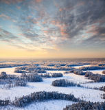 Top view of winter forest at frosty evening Stock Photography