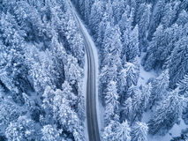Top view of winter forest and Road Royalty Free Stock Image