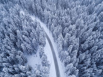 Top view of winter forest and road Royalty Free Stock Photo