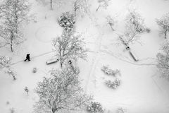Top view on a winter park covered with snow. Aerial top view on a winter park with trees and footpath covered with snow. Lonely man walking through Royalty Free Stock Photography