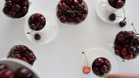 Top view of woman hands laying cherries on the table. Creative food background. Flat lay stock footage
