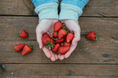 Top view of woman hands with strawberries on wooden table.  Stock Photos
