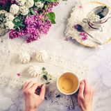 Top view woman`s hands holding vintage cup of green tea and spiraea branch on the table with meringue cakes, a bouquet of blossom royalty free stock image