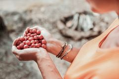 Top view of woman wearing orange shirt holding many red berries in her hands. Red berries. Top view of young stylish woman wearing orange shirt holding many red stock photos