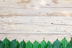 Top view,Wood background with leaf Stock Image
