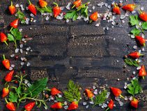 Top view of wreath from dry and red peppers, sea salt, different Royalty Free Stock Image