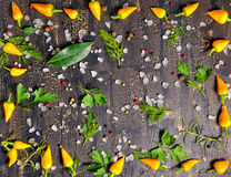 Top view of wreath spice from dry and yellow hot chili peppers, Royalty Free Stock Images