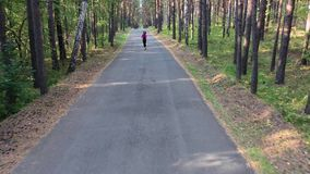 Top view of a young woman runs through the forest. stock video footage