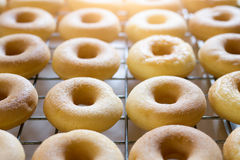 Top viwe of group donuts cake. Stock Photos
