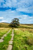 Haworth Moor. The iconic Haworth moor. Yorkshire, the Spiritual home of the Bronte sisters royalty free stock photo