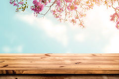Top of wood table with pink cherry blossom flower on sky background Royalty Free Stock Photos