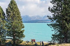 THE TOPAZ BLUE WATER AND SNOW CAPPED MOUNTAIN PEAKS OF LAKE PUKAKI ATTRACT THOUSANDS YEARLY royalty free stock photos