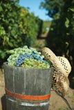Tope por completo de uvas Imagen de archivo