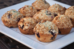 Tope View Blueberry muffins topped with granola. Platter of prize-winning blueberry muffins Royalty Free Stock Image