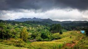 Topes de Collantes nationalpark Royaltyfri Fotografi