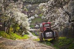 Topesti village in Romania Royalty Free Stock Photos
