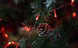 Topetón de la Navidad Foto de archivo