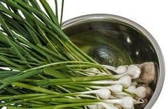 Topete do alho cru para cozinhar, isolado no fundo branco Fotos de Stock