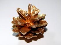 Topetones de oro en un fondo ligero Imagen de archivo libre de regalías