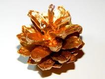 Topetones de oro en un fondo ligero Foto de archivo libre de regalías