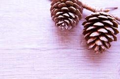 Topetones del bosque de la Navidad Fotografía de archivo libre de regalías