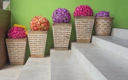 Topf Blumen an der Treppe Lizenzfreie Stockbilder