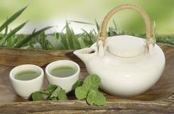Topf des grünen Tees Stockbild