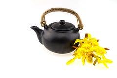 Topf des schwarzen Tees mit der Mokkara-Gelb Orchideenblume lokalisiert auf Whit Lizenzfreies Stockbild