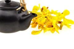 Topf des schwarzen Tees mit der Mokkara-Gelb Orchideenblume lokalisiert auf Whit Lizenzfreie Stockfotos