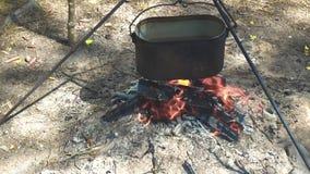 Topf Wasser auf dem Feuer stock video