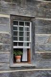 Topfpflanze auf Fensterbrett Lizenzfreies Stockfoto
