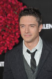 Topher Grace. At the world premiere of his new movie 'Valentine's Day' at Grauman's Chinese Theatre, Hollywood. February 8, 2010  Los Angeles, CA Picture: Paul Stock Images