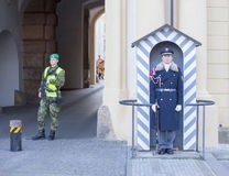 topi τερμιτών στάσης αναχωμάτων φρουράς αντιλοπών Στοκ Εικόνες