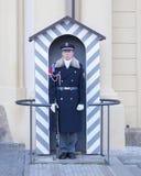 topi τερμιτών στάσης αναχωμάτων φρουράς αντιλοπών Στοκ Φωτογραφίες