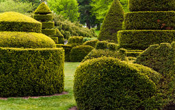 Topiary κήπος στους κήπους Longwood, PA. Στοκ Φωτογραφία