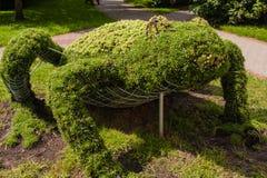 Topiary κλουβί καλωδίων. Στοκ Εικόνες