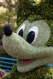 Topiary мыши Mickey стоковое фото rf