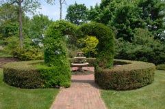 topiary сердца стоковые изображения rf