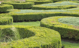 Topiary Royalty Free Stock Photography
