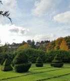 topiary Photo stock