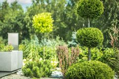 Topiary Art of Clipping Shrubs Stock Images