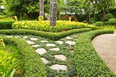 Topiary. Arte del diseño del jardín Foto de archivo libre de regalías