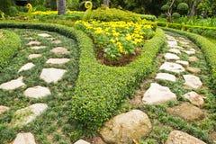 Topiary. Arte del diseño del jardín Imagen de archivo