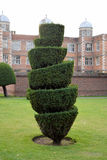 Topiary Bush stock images