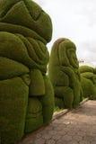 Topiary closeup in Tulcan Ecuador Stock Photo