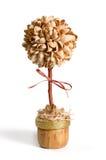 Topiary de la cáscara del pistacho sobre el fondo blanco fotos de archivo libres de regalías