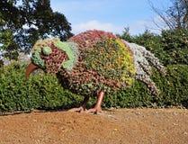 Topiary in een Engels park stock fotografie