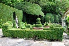 Topiary in een Formele Tuin Stock Foto's