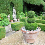 Topiary in einem formalen Garten Stockfoto