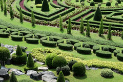 Topiary in an English Formal Garden Royalty Free Stock Photo
